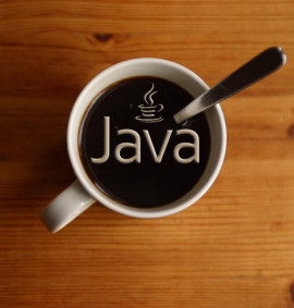 Java Development Training
