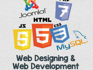 Web Designing And Web Development Training In Chandigarh